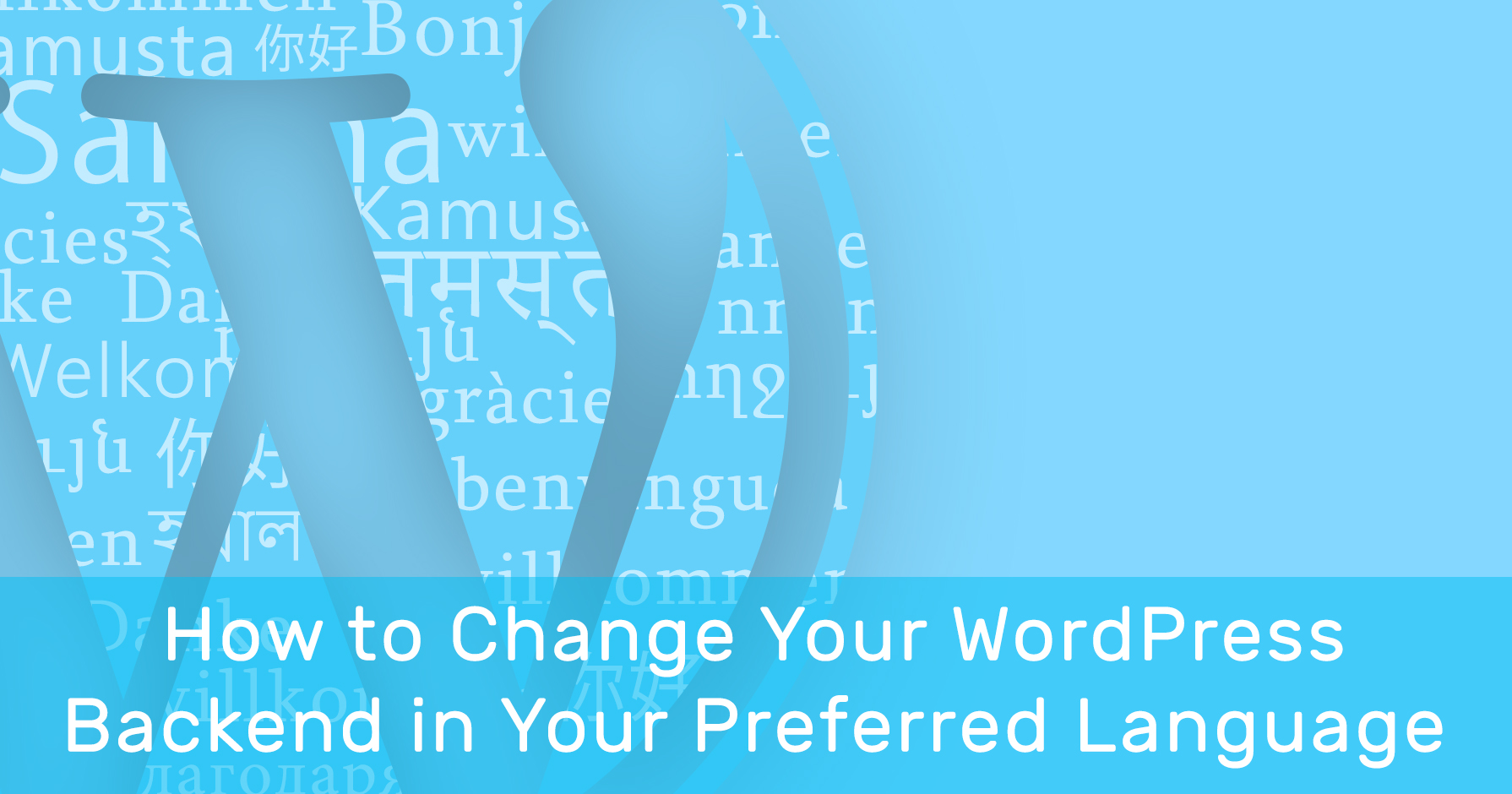 How to Change Your WordPress Backend in Your Preferred Language?