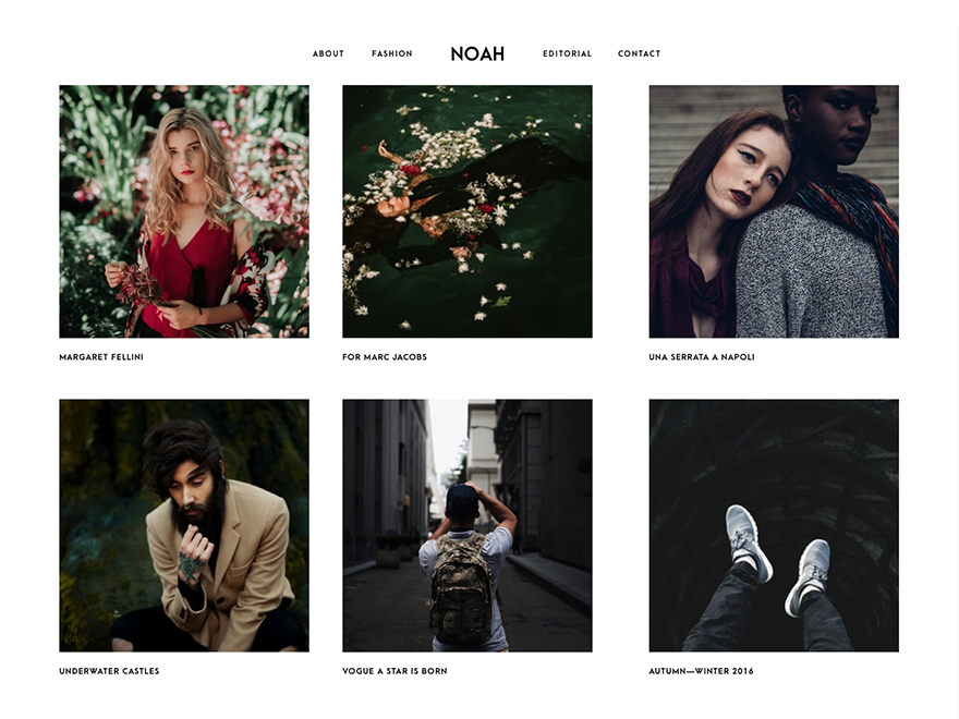 Noah Lite WordPress Theme