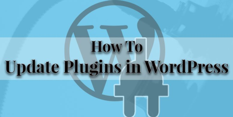How to Update Plugins in WordPress