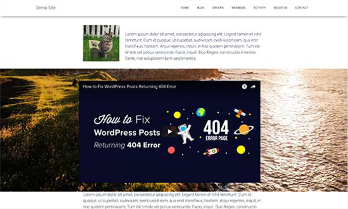 Add Parallax Effect to Any WordPress Theme with CSS. Image Source: WP Beginner