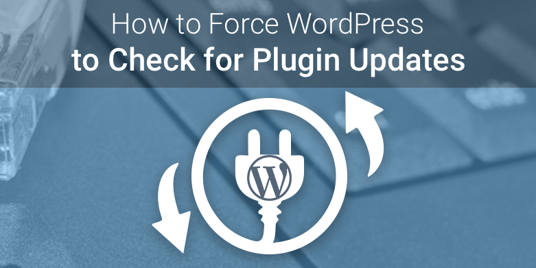 How to Force WordPress to Check for Plugin Updates