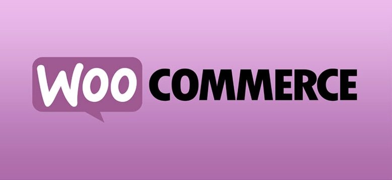 WooCommerce 3.3 Removed From Plugin Directory