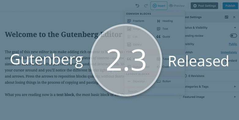 Gutenberg 2.3 – The New Version of Gutenberg Editor