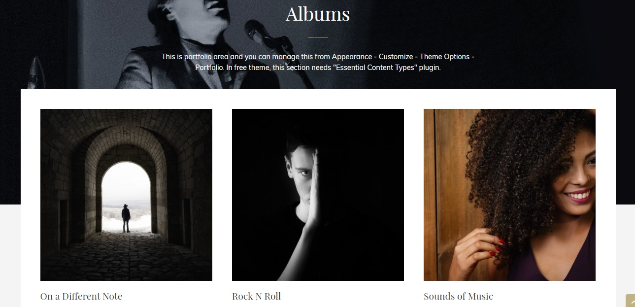 Portfolio section in My Music Band