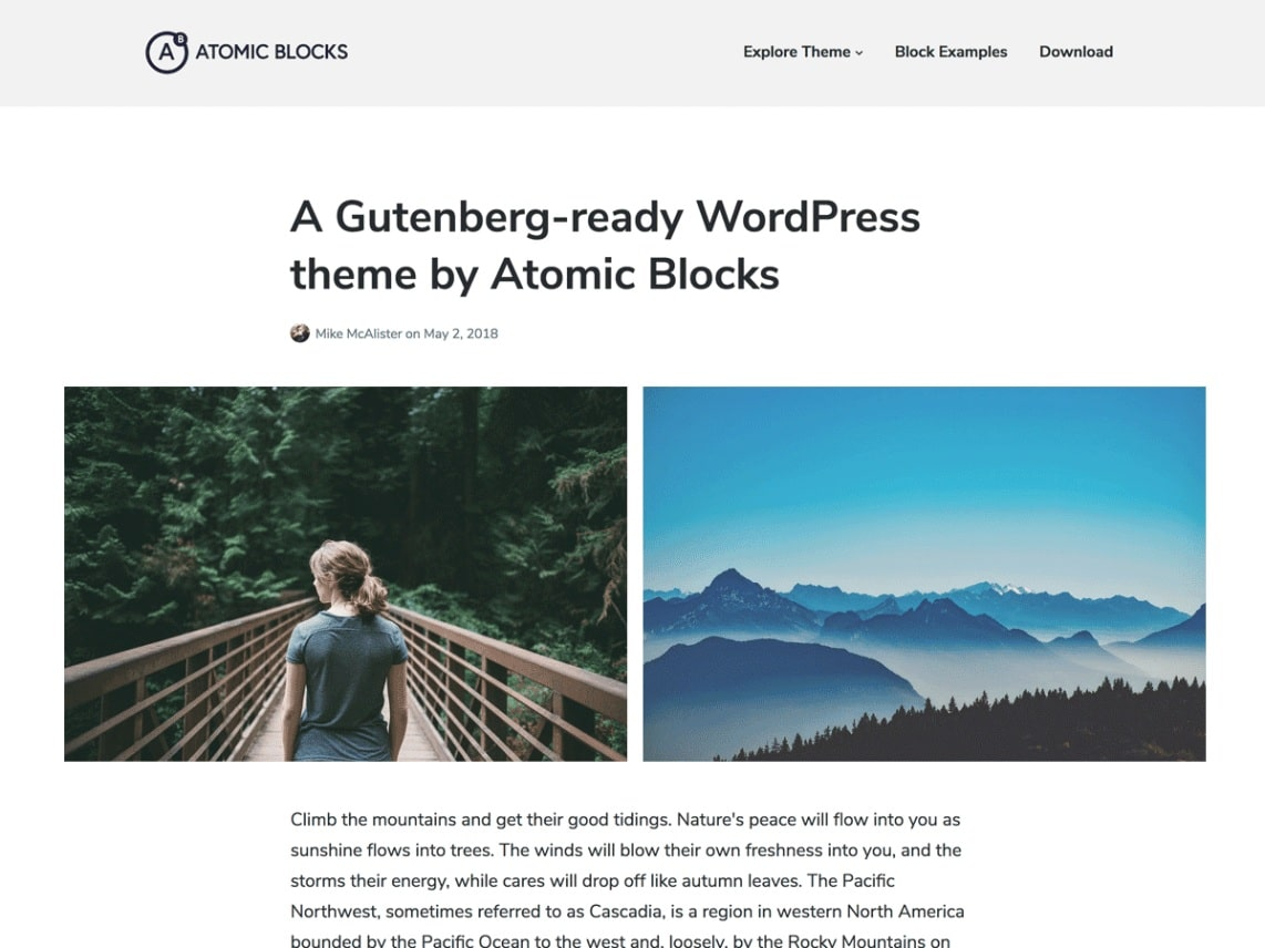 Atomic Blocks. Image Source: WordPress.org
