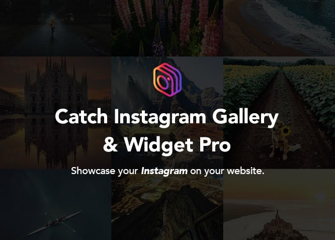 Catch Instagram Feed Gallery & Widget Pro plugin