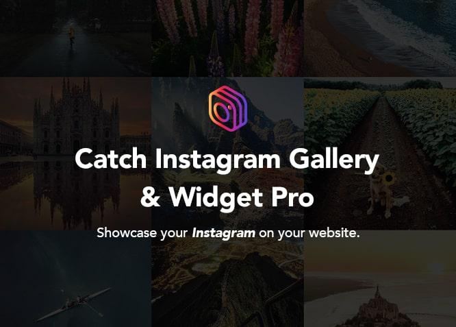 Catch Instagram Feed Gallery & Widget Pro plugin