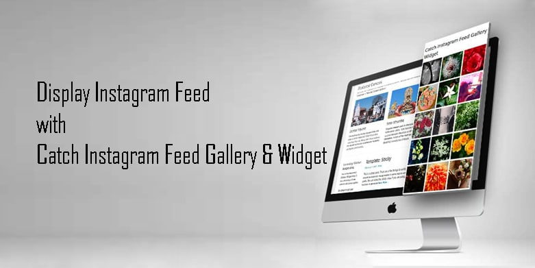Display Instagram Feed on your WordPress Site with Catch Instagram Plugin