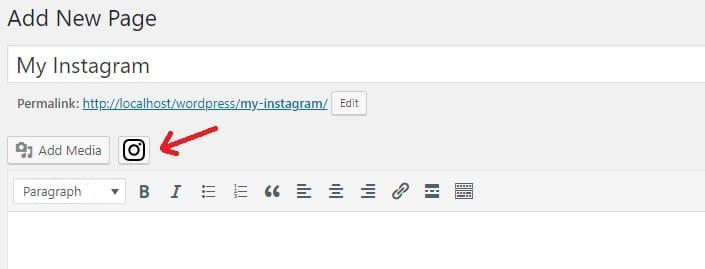 Instagram logo on the visual editor