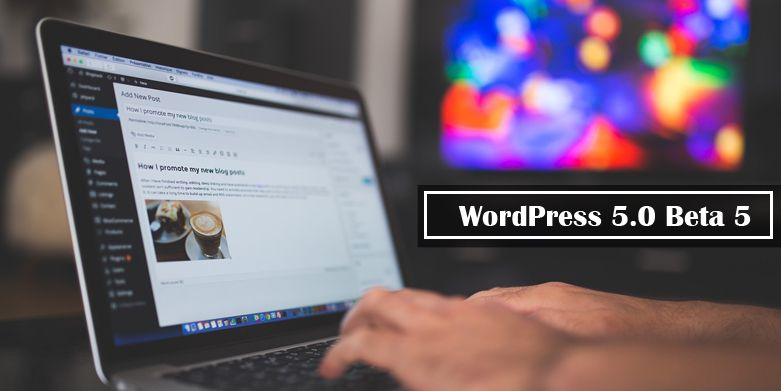 WordPress 5.0 Beta 5 is Now Available for Testing!