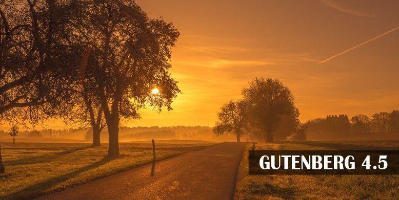 gutenberg 4.5 released