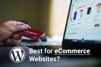WordPress is best for eCommerce Websites