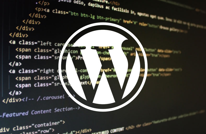 follow-wordpress-standard-codes