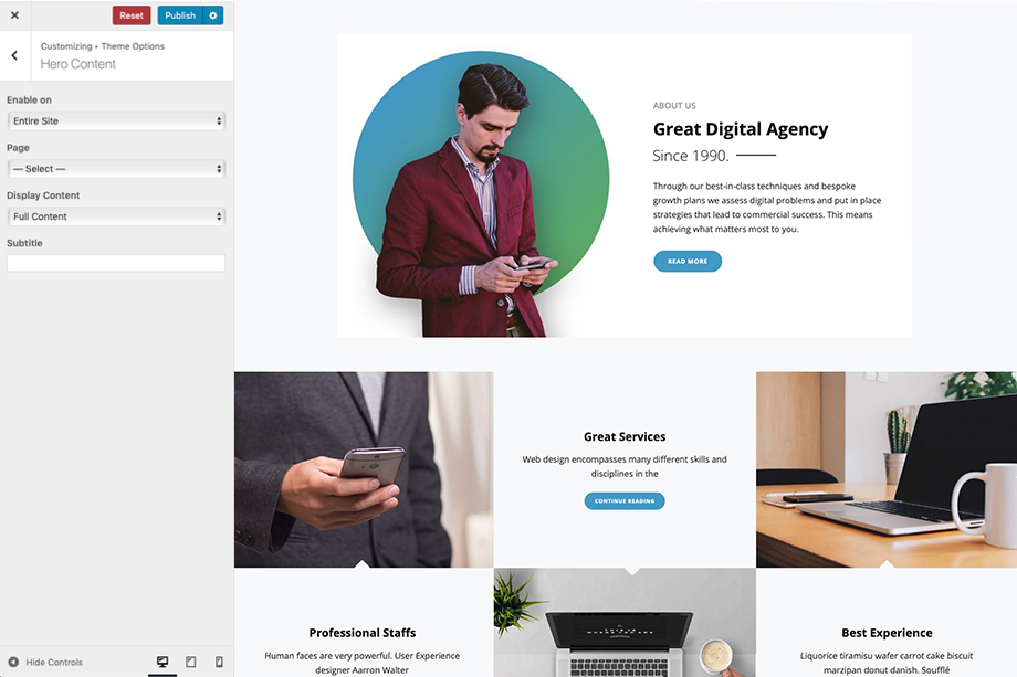 Hero Content in Intuitive - A corporate free WordPress theme