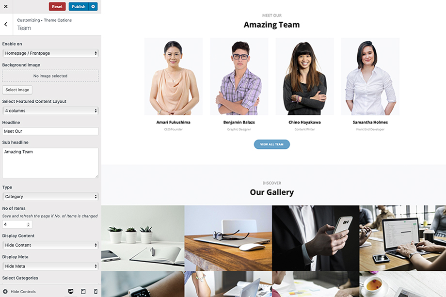intuitive-pro-wordpress-theme-team