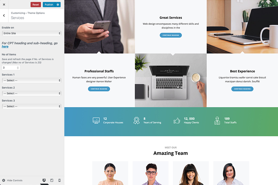 Services section in Intuitive - A corporate free WordPress theme