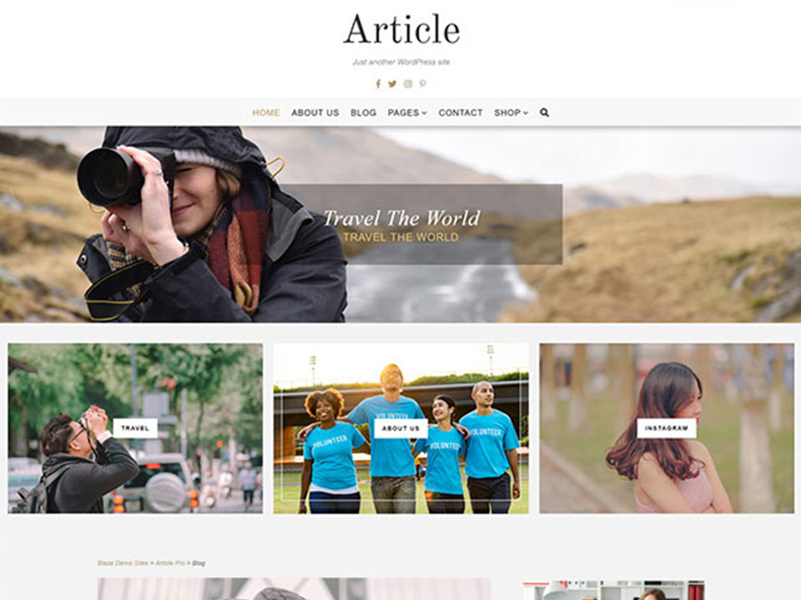 Article Lite - 10 Best Free WordPress Themes of may 2020