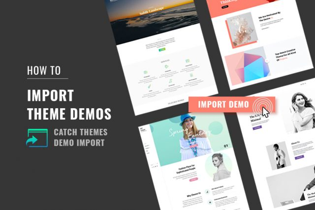 How to Import Theme Demos with Catch Themes Demo Import