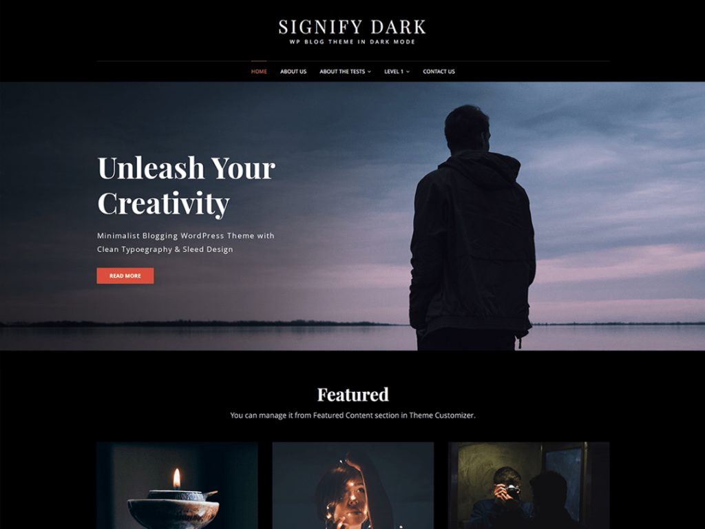 Signify Dark - 10 Best Free WordPress Themes of October 2020
