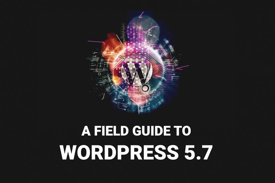 WordPress 5.7 Field Guide Full features