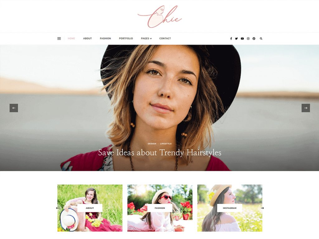 10 Best Free WordPress Themes of April 2021 - Chic Lite